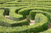 five-paths